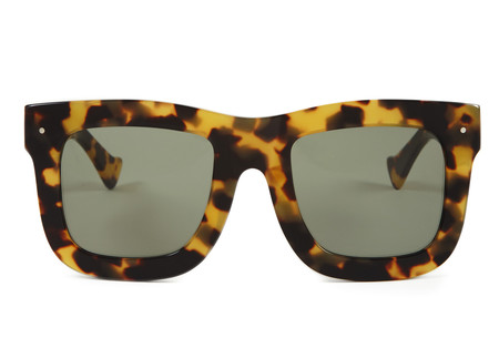 Grey Ant Status Sunglasses