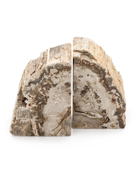 ROOST PETRIFIED WOOD BOOK END