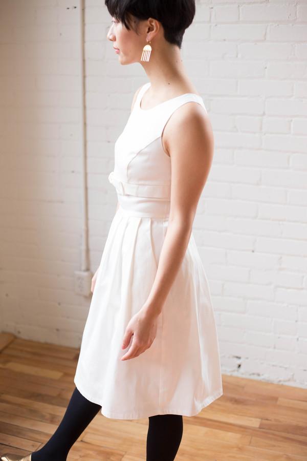 Birds of North America Soar Dress (Ivory)