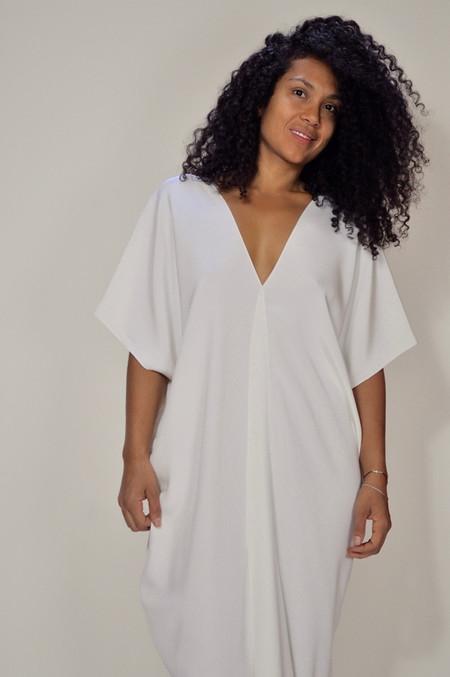 Voz Silk Dress