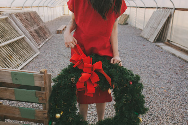 holiday covey dress