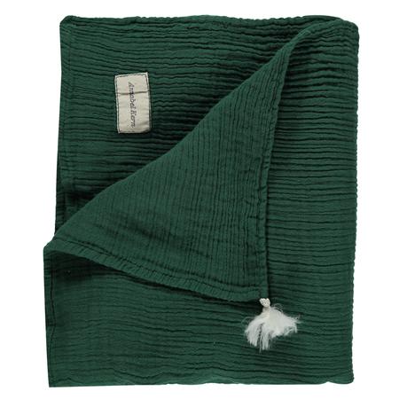 Kid's Annabel Kern Nomade Cotton Gauze Large Swaddle Blanket - Green