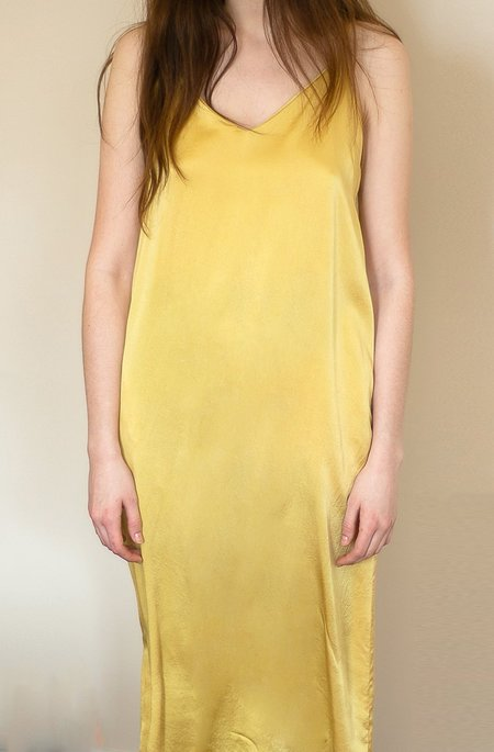 Colorant Silk Slip Dress - Gold