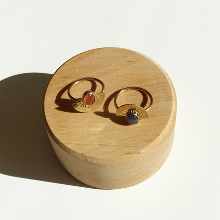 Fade into the Abstract Curve Ring