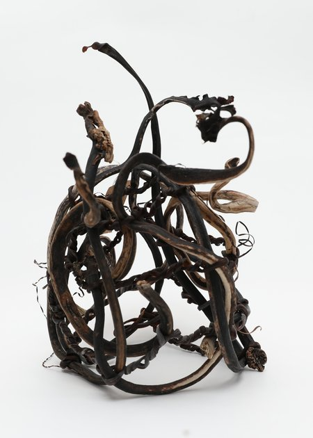 Lina Prairie Kelp Sculpture