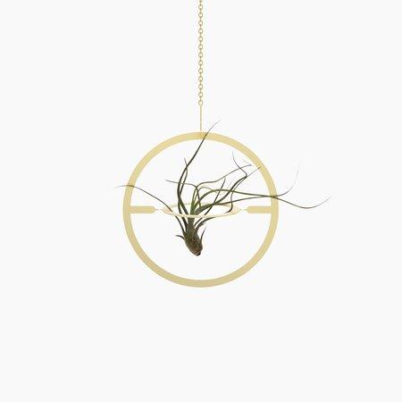 Fin Design Circle Plant Mobile - Brass