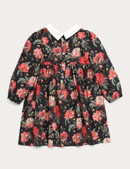 Kids Petits Vilains Clothier Clara Pointy Collar Dress - Red Floral