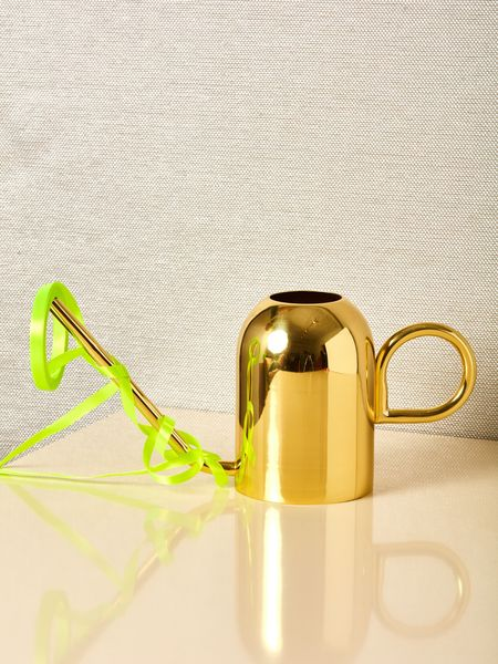 AYTM Brass Watering Can