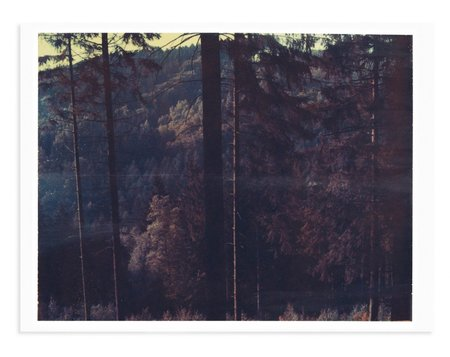 Adam Custins Black Forest, Germany #3 Art Print