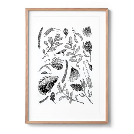Sophia Mary Mac Lennox Head 1 Art Print