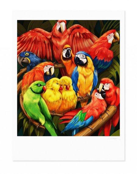 Kelly Thompson Parrots Print