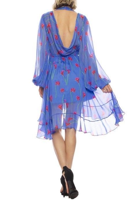 Caroline Constas Olivia Silk Ruffle Open-Back Dress - Floral Print
