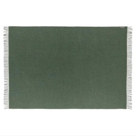 Ajaie Alaie Rwana Blanket Scarf - Fern