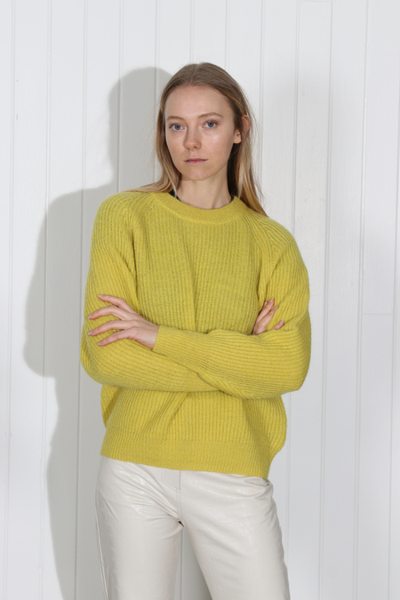 No.6 Darwin Sweater - Citrus