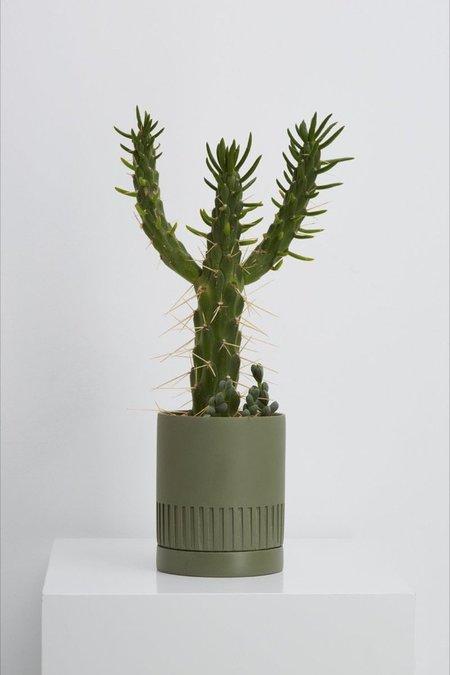Capra Designs Agave Etch Pot