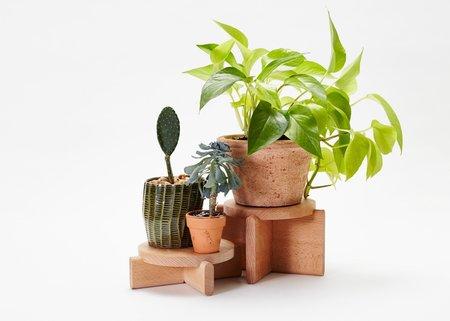 Areaware Plant Pedestals Set of 2