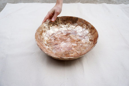 The Object Enthusiast Oyster Shell Bowl