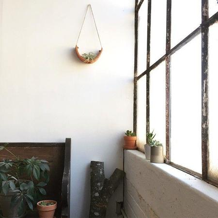 Mudpuppy Ceramic Studio Hanging Ceramic Air Plant Cradle - Terracotta