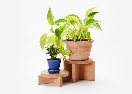 Areaware plant pedestal set