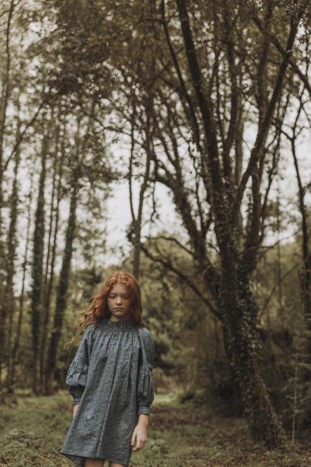 Kids The New Society Olivia Dress - Emma Georgina Blue Liberty