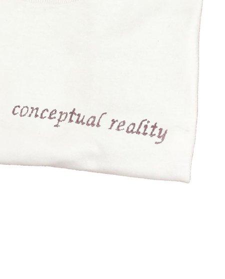 House Of 950 Conceptual Reality
