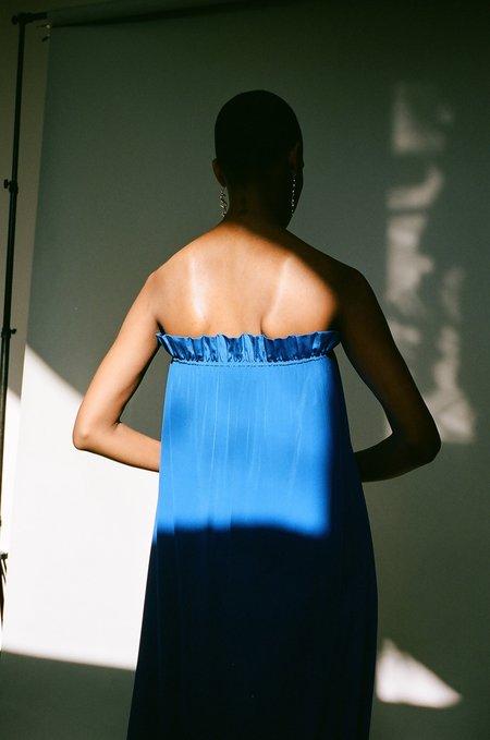 Maryam Nassir Zadeh Tahoe Glory Dress - electric blue