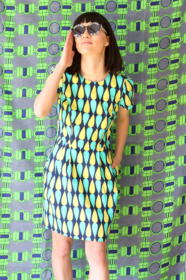 Birds of North America Cormorant Dress (Green and Navy)