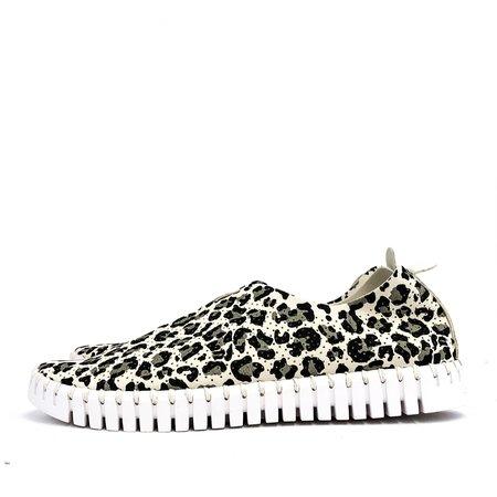Pattino Shoe Boutique Ilse Jacobson Tulip Sneaker - Cream Cheetah
