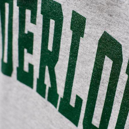 Tilted Brim TENDERLOIN Champion arch hooded sweatshirt - grey