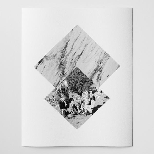 Barclay Haro Art Concepts Marble + Cactus