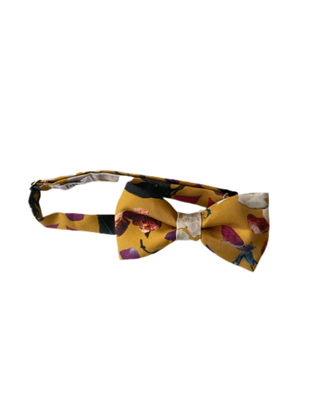 Christine Alcalay Bow Ties