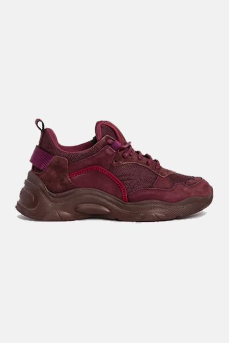IRO Curverunner Sneakers Shoes - Burgundy