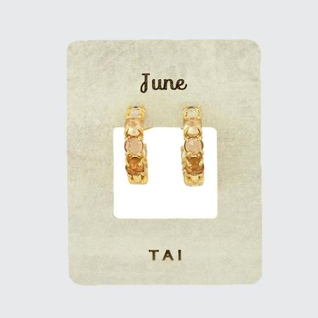 tai Birthstone Huggie Earrings