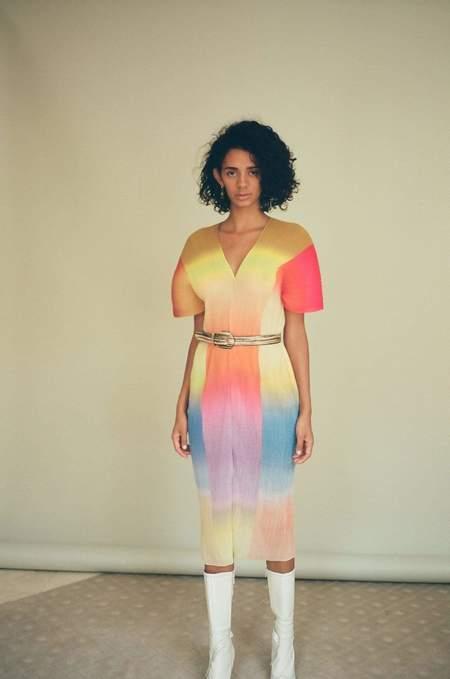 Julia Heuer Calico Sasha Dress