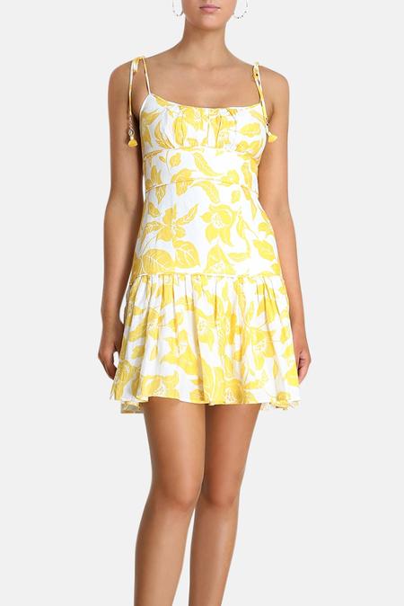 Zimmermann Bells Fit Flare Mini Dress - Yellow