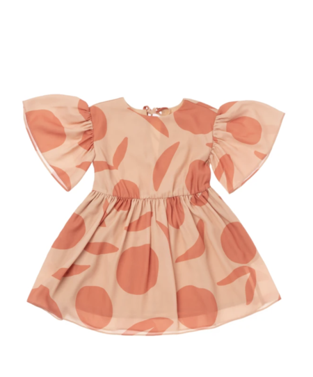 Kids OMAMImini Fit & Flare Dress with Flutter Sleeve