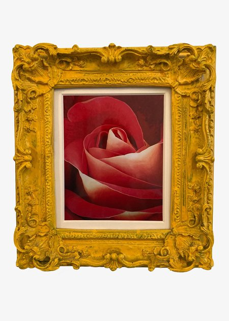 Fabian Molina's Flower Series - Rose 7