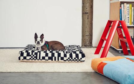 Dusen Dusen Embroidered Dog Beds