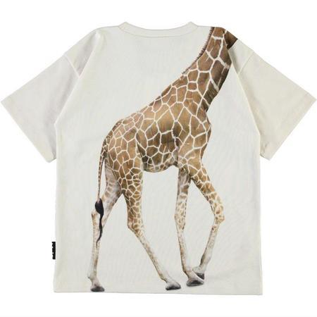 Kids Molo Rillo T-shirt - White Star