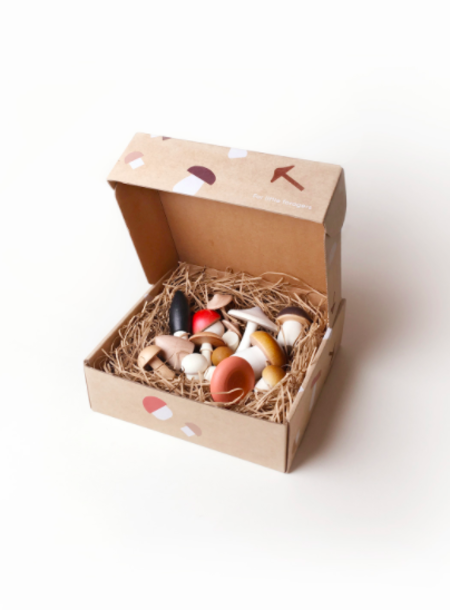 Kids MOON PICNIC Forest Mushrooms in a Box