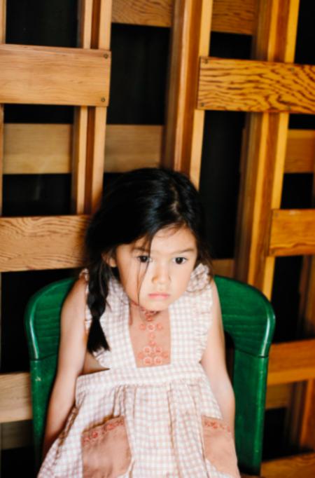 Kids Apolina Felicity Pinafore Dress - Picnic Check