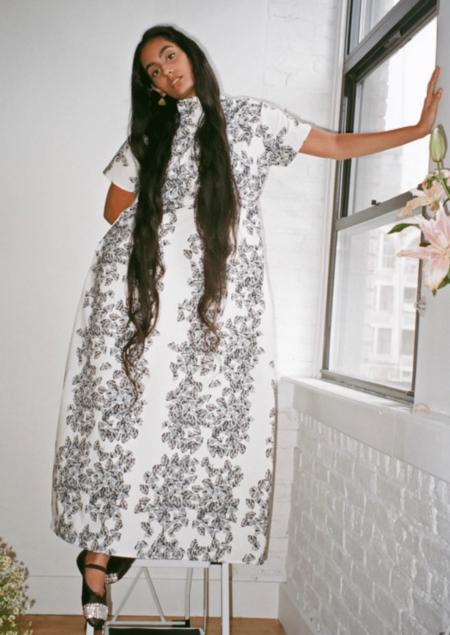 Dauphinette Flying Backwards Dress - white/black