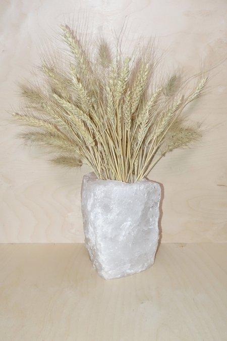 Please, Plants Quartz Vase
