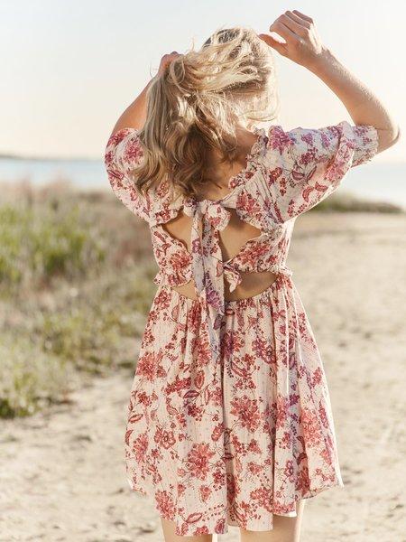 Misa Los Angeles Ara Dress In Linen - Siena Floral