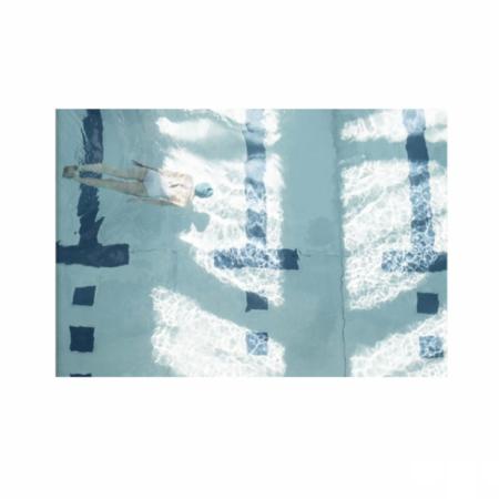 SOOuk The Life Aquatic Print