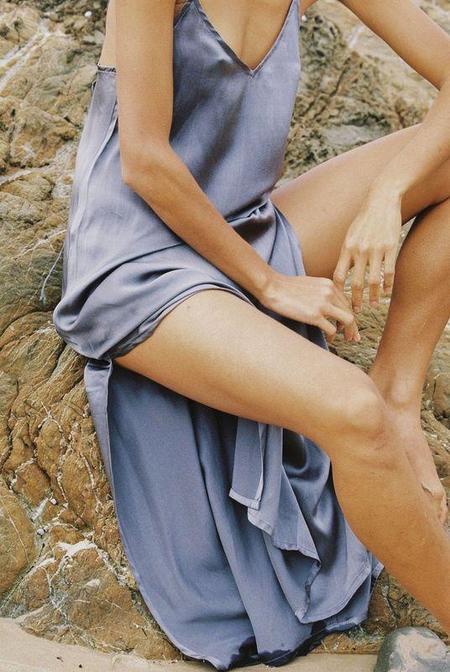 Bahhgoose Silk Slip Dress