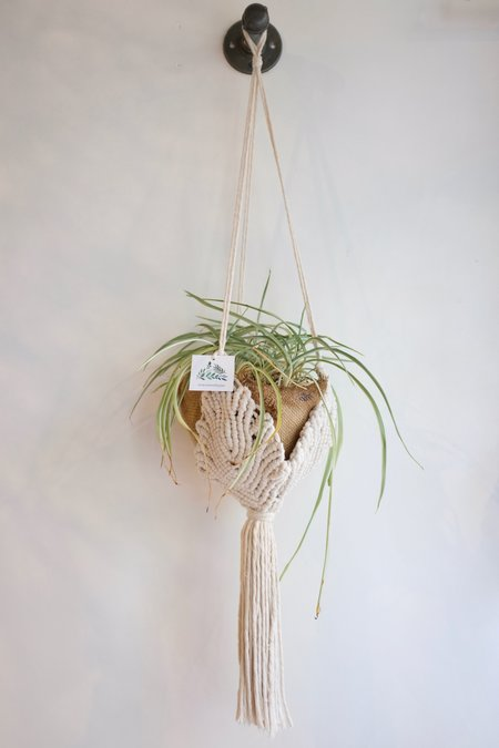 MacramebyJae Plant Hanger - Cream Leafy