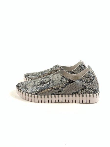 Ilse Jacobsen Tulip Shoes - Snake