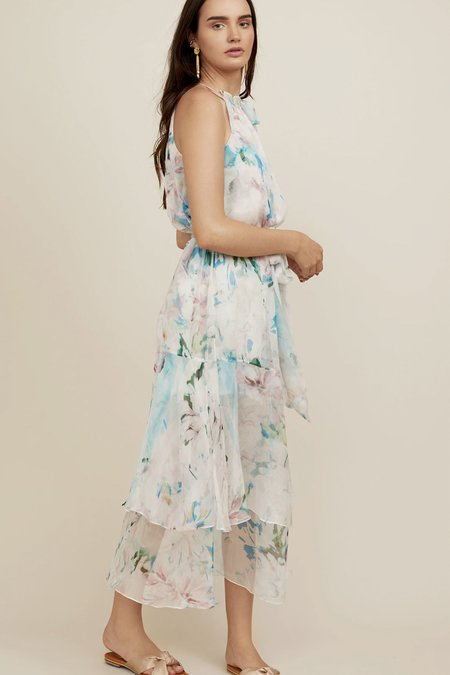 Christy Lynn Silk Chiffon Elodie Dress - Watercolor
