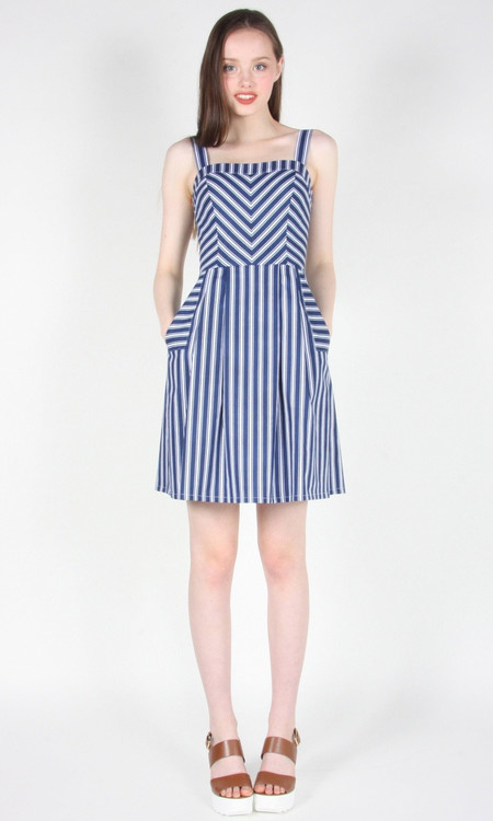 Birds of North America Minivet Dress (Blue Stripes)